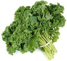 legume-pour-regime