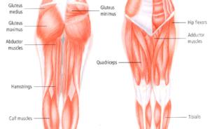 Maigrir du bas du corps (fesses, hanches et cuisses) – 5 Exercices efficaces