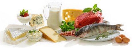protéine calories