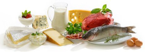 proteine calories