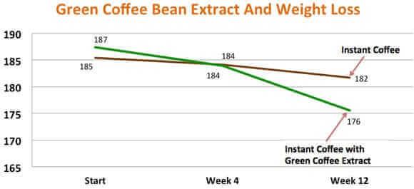 grains de café vert vs café